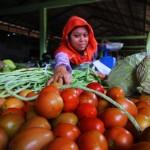 Utara, harga tomat mengalami kenaikan Rp2 ribu perkilogramnya. Azzi/RADAR BEKASI