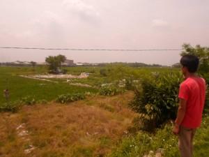TERCEMAR LIMBAH: Lahan pertanian di Kampung Sindanglengo, Desa Klapanunggal, Kecamatan Klapanunggal, diduga tercemar limbah dari penampungan barang bekas milik salah seorang warga setempat.