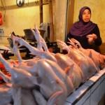 Pedagang daging ayam
