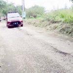 BAHAYA: Belum adanya perbaikan membuat jalan alternatif di Desa Cijujung rusak parah dan memicu kecelakaan. Wilda/Radar Bogor