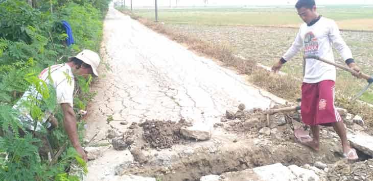 Petani saat membuat saluran air. Sejumlah petani di Kampung Pulogatik, Desa Jayalaksana mempertanyakan janji Bupati bekasi yang akan menghidupkan saluran irigasi dan menyediakan pompa air.