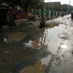 Tak kunjung diperbaiki warga nekat tanam pojon pisang ditengah jalan rusak. Foto: Dede/pojokjabar