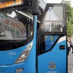 Bus-Premium