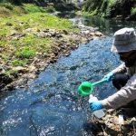 PENGEcEKAN: Salah seorang petugas sedang mengambil sample air di sungai Citarum, Bandung beberapa waktu lalu. Ist