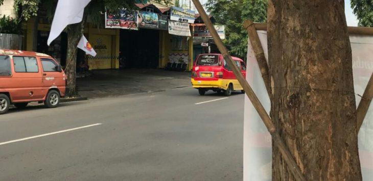 Bendera Gerindra yang dipaku di Pepohonan, sepanjang jalan Basuki Rahmat Sindang Kasih Purwakarta./Foto: Ade