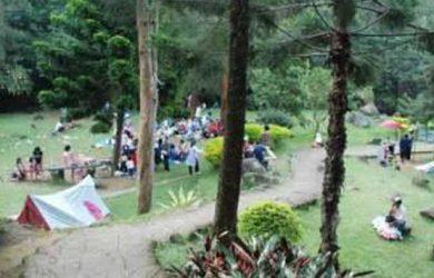 Pokland Wisata Hutan Pinus Di Cianjur Yang Lagi Hits Cek