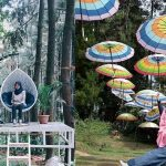 Gunung Pancar Sentul Bogor