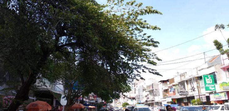 Jalan Pemotongan Yang dinaungi pohon. Foto: Alwi/Pojokjabar.com