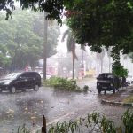 Angin luluhlantakkan pepohonan di Jalan KH Abdullah Bin NuhMinggu 22/07/2018) sore