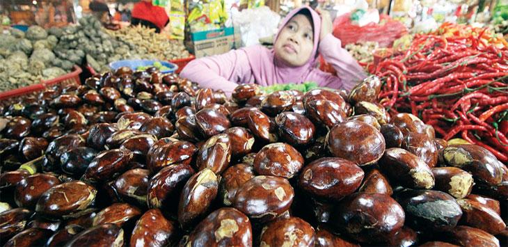 HARGA MEROKET: Pedaganng meratapi nasib menunggu pembeli jengkol di lapak dagangnya di Pasar Agung, Jalan Proklamasi, Kecamatan Sukmajaya, kemarin. Ahmad Fachry/Radar Depok