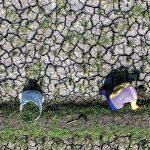 CEK: Petani melakukan pengecekan sawah yang terdampak kekeringan di Desa Cibiru Hilir, Kecamatan Cileunyi, Kabupaten Bandung, Senin (6/8). RIANA SETIAWAN / RADAR BANDUNG