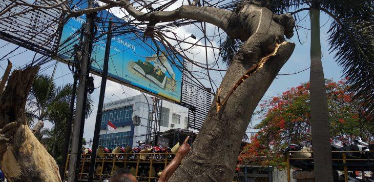 Warga saat menunjukkan pohon tumbang yang menimpa kabel listrik di Jalan Tuparev, Kabupaten Cirebon. Alwi/pojokjabar.com
