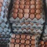 Harga Telur di Indramayu yang Terus Melonjak Naik
