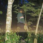 MENGGANTUNG: Seorang laki-laki yang diketaui berinisial DD ditemukan tergantung di pohon di hutan Manglayang timur. TOHA HAMDANI/RADAR SUMEDANG