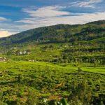 Tempat wisata menyejukan mata di Bogor