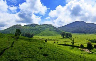 Deretan Lokasi Wisata Puncak Bogor Yang Seru Abis