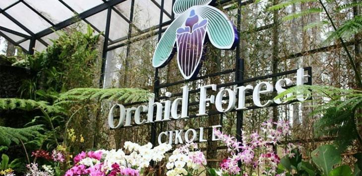 WISATA : Objek wisata Alam Orchid Forest menjadi wisata alam terviral se-Indonesia pada tahun 2018 lalu berdasarkan riset Platinum Indonesia Awards.