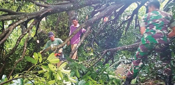 SINGKIRKAN POHON TUMBANG: Warga dibantu aparat Koramil berupaya menyingkirkan pohon mangga yang tumbang ke jalan. TOHA HANDANI/Radar Sumedang
