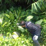 Mr X yang ditemukan tewas disamping rel di Kampung Curug Bojonggede (rishad)