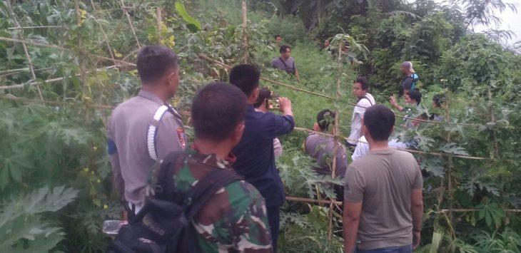 Para Anggota Kepolisian Berpakaian Preman saat mengamankan Ladang Ganja Di Sukasari Purwakarta (Foto Istimewa)
