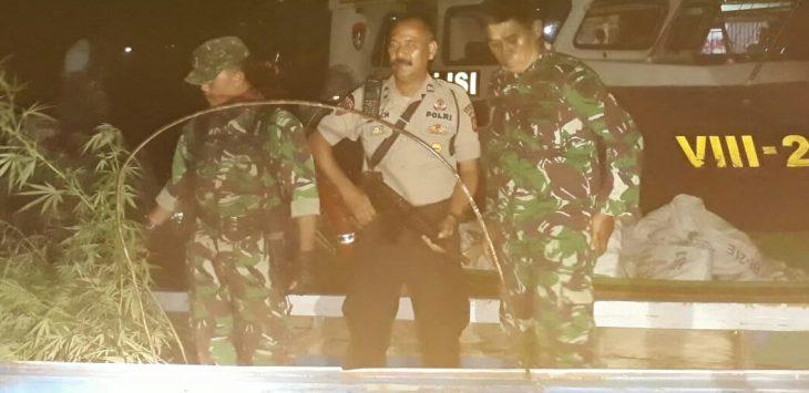 TNI dan POLRI mengawal ketat pohon-pohon ganja saat dibawa melalui jalur air, dari ladang ganja yang ditemukan di Sukasari