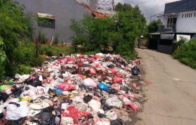 Tumpukan Sampah di Pinggir Jalan Bikin Warga Setia Mekar Risih
