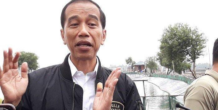 Presiden Joko Widodo (foto net)