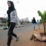 Pohon-pisang-di-jalan-raya-margonda