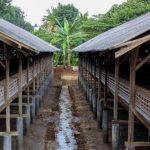 Soal Krisis Pakan Ayam Petelur, Begini Permintaan DPRD Buat Pemprov Jabar