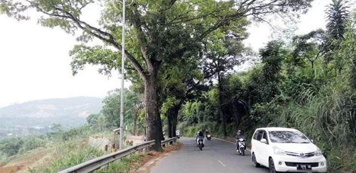 Jalan perlintasan Gunungkarang, Desa Sekarwangi, Kecamatan Cibadak minim PJU dan konstruksi jalan masih rusak.