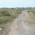 jalan pertanian