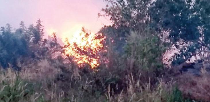 Api nampak membara membakar kawasan Geoprak Ciletuh, tepatnya di Cekdam, Desa Tamanjaya, Kecamatan Ciemas, senin (24/6/19). Ist