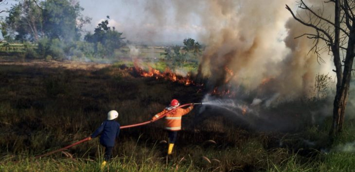 Petugas pemadam kebakaran sedang melakukan pemadaman lahan. Ist/pojokjabar