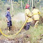 Kebakaran-Hutan-di-Sukabumi