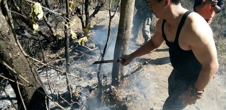 Kebakaran lahan di Gunung Ciremai Kuningan./Foto: Istimewa