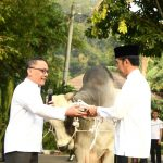 Presiden Jokowi dan hewan kurban