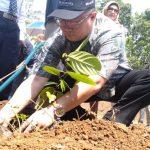 Gerakan Nasional Konservasi Pohon Langka Nusantara (GNKPLN)
