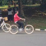 Jokowi-dan-Irian