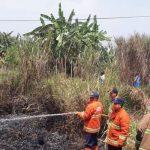 Kebakaran-Lahan-di-Sukabumi
