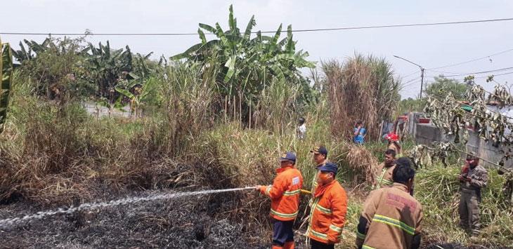 Sejumlah petugas saat memadamkan Api disalah satu lahan kosong milik warga.