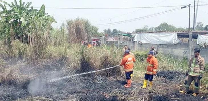 Petugas Pemadam kebakaran saat memadamkan kebakaran lahan di Jalan Palamarta, Kelurahan Nyomplong, Kecamatan Warudoyong. Ist