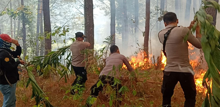 Gunung Tampomas Terbakar