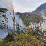 Hutan Kawah Putih Ciwidey terbakar (ist)