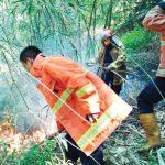 Kebakaran-Hutan-di-Purwakarta