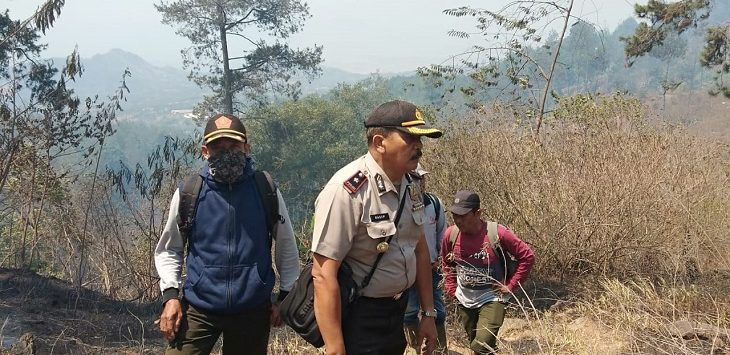 Lokasi hutan di Gunung Malabar, Bandung, terbakar sejak hari Sabtu (5/10/2019) malam lalu./Foto: Istimewa