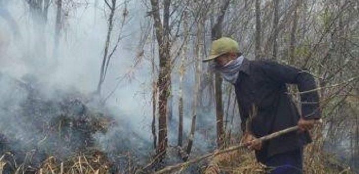 Kebakaran hutan di lereng Gunung Putri, Garut./Foto: Istimewa