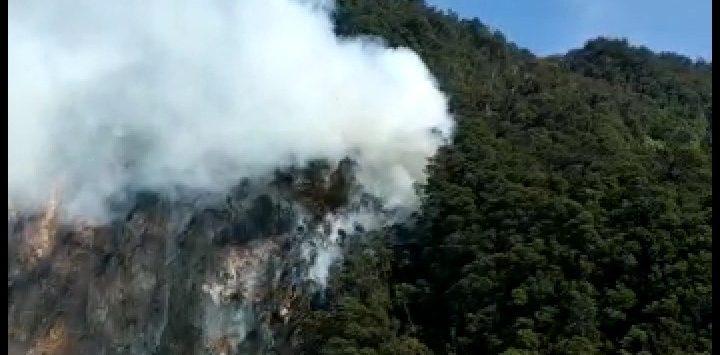 Kebakaran hutan di area obyek wisata Kawah Putih./Foto: Istimewa