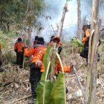 Pemadaman kebakaran di Hutan Gunung Kanaga Tanjungsari Bogor (ist)