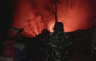 Puluhan hektare lahan di Gunung Cikuray Garut terbakar (ist)