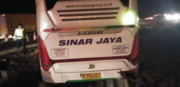 Dua Bus Adu Bagong di Tol Cipali